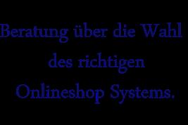 Beratung Onlineshopsystem